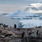 antarctica-940554_1280